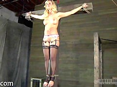 Blonde, Tied, Sister humiliated, Gotporn